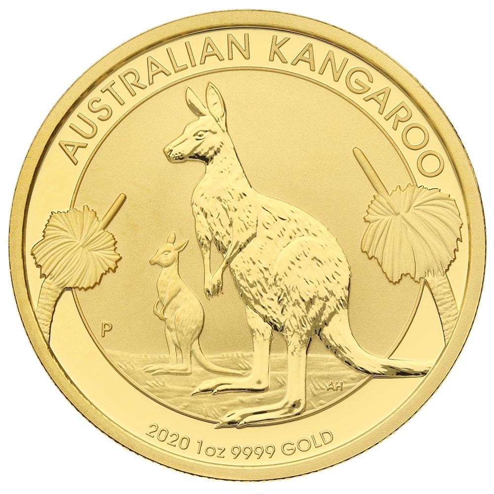 Austrialian Kangaroo